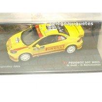 "<p>MODELO:<strong>Peugeot 307 WRC - Rally Argentina 2006 - G. Galli - G. Bernacchini</strong></p><p>FABRICANTE: <strong>IXO</strong></p><p>ESCALA - SCALE - ECHELLE - MABSTAB: <strong>1/43 - 1:43</strong></p><p><strong style=""font-style:normal;line-height:1.5em;font-family:Raleway, sans-serif;font-size:11.2px;"">Ver más<a class=""btn btn-default"" href=""https://www.selegnajuguetes.es/es/coches-a-escala/"">coches a escala</a></strong><strong style=""font-style:normal;line-height:1.5em;font-family:Raleway, sans-serif;font-size:11.2px;"">Ver más<a class=""btn btn-default"" href=""https://www.selegnajuguetes.es/es/por-escalas/escala-1-43/"">1/43 - 1:43</a></strong></p>"