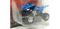 Yamaha Raptor 660R 1/24 Quad Yat Ming